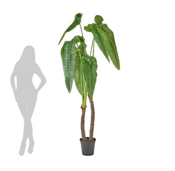 Alocasia Calidora artificiale Real Touch