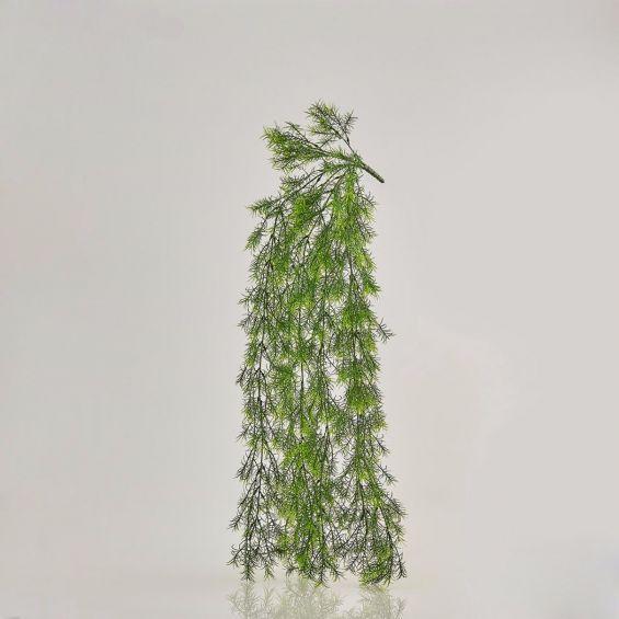 Asparagina: piante artificiali di qualità