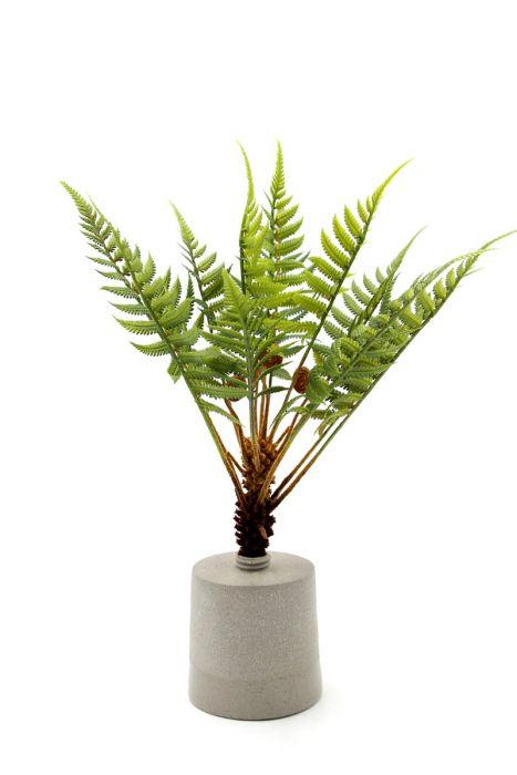 Felce pianta finta da appartamento: piante artificiali di qualità