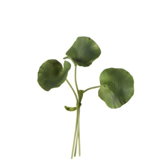 Foglie di Nelumbo pianta di Loto: piante artificiali di qualità