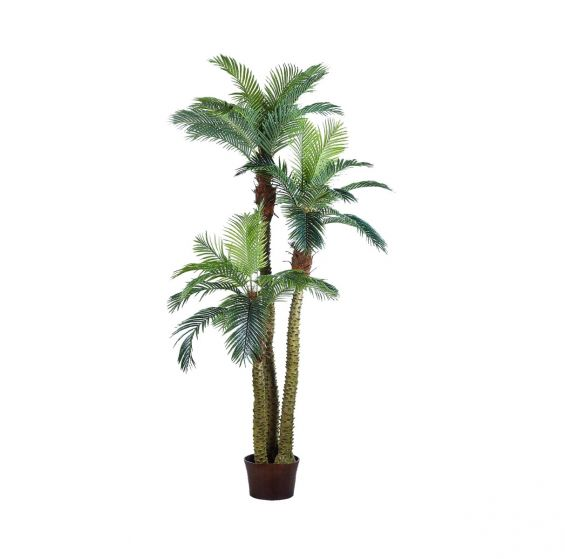 Palma Areca Artificiale Real Touch
