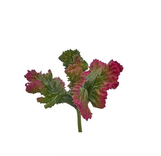 Euphorbia Crestata Artificiale