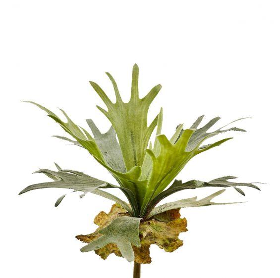 Ramo Platycerium pianta H35: piante artificiali di qualità