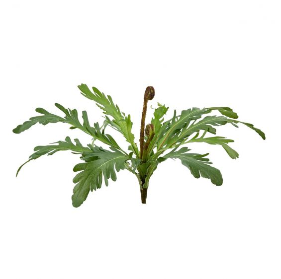 Felce Davallia artificiale H28 : Piante verdi artificiali di qualità