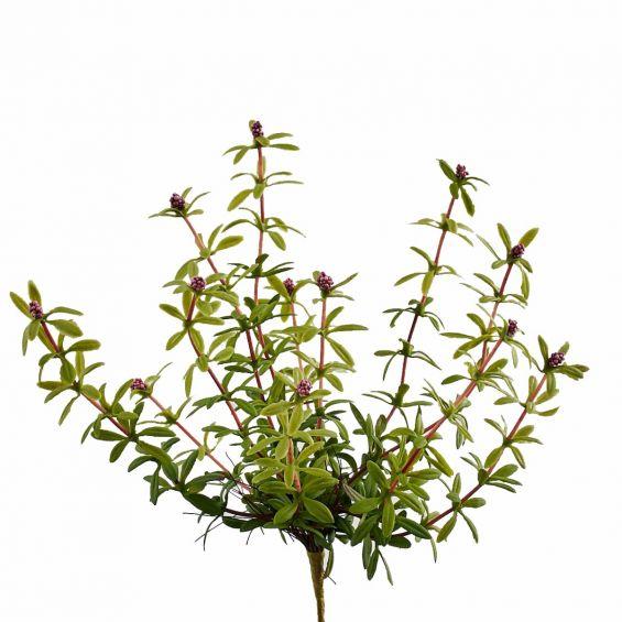 Pianta grassa con fiori finta: piante artificiali di qualità