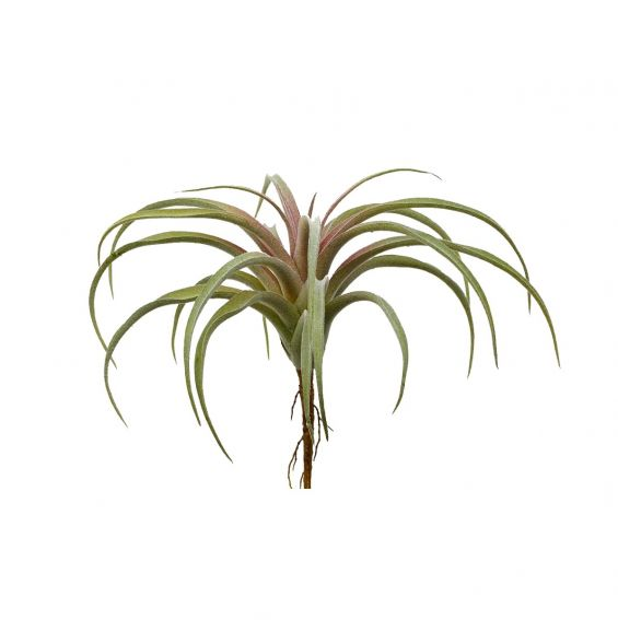 Pianta di Tillandsia artificiale H24