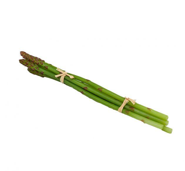 Asparago selvatico artificiale MZ/6PZ | Frutta e verdura finta