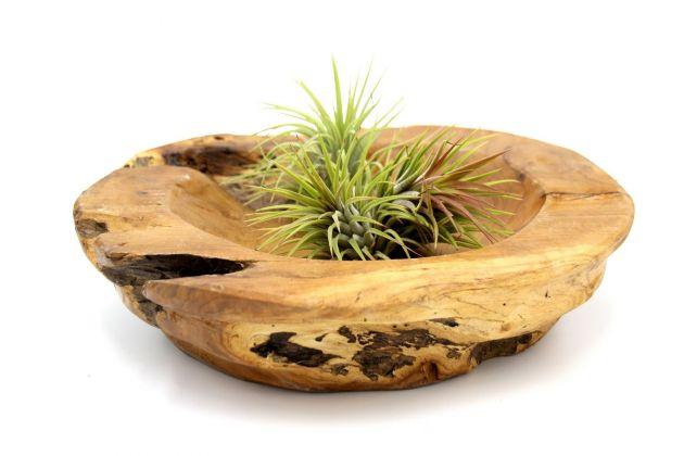 Ciotola Borra: svuotatasche in legno teak massello PTMD