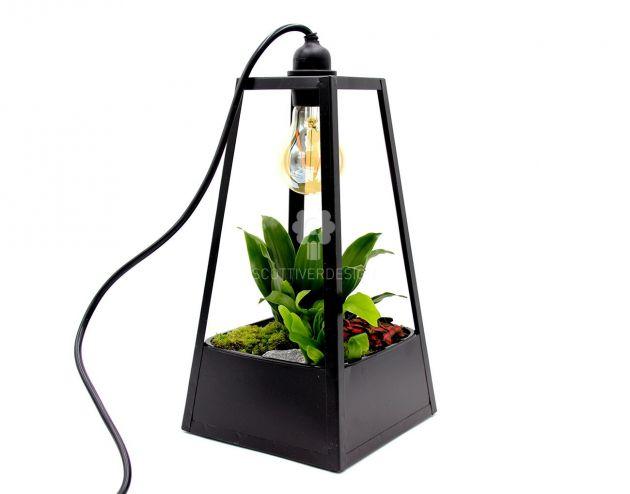 Green Lantern Lamp : Lampada da tavolo con composizione di piante