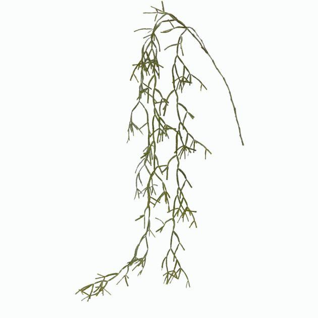 Euphorbia Tirucalli Cadente: piante grasse artificiali di qualità