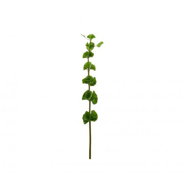 Fiore Molucella artificiale H78