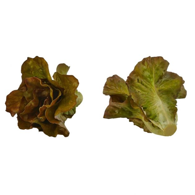 Lattuga artificiale H15 D18 | Frutta e verdura finta