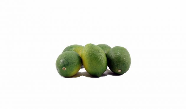 Limoni finti verdi: frutta finta