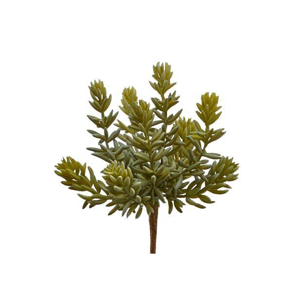 Pianta succulenta artificiale H20 : Piante grasse artificiali di qualità