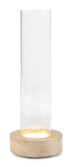 Vaso portafiori in vetro su base in legno con led H22cm