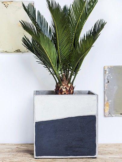 Marie Arty: vasi in cemento da esterno o da interno Serax